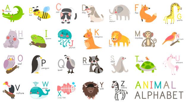 Dạy bé học tiếng Anh qua con vật